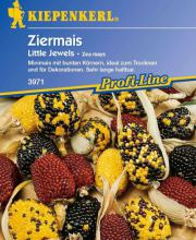 Ziermais Little Jewels